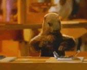 milka-marmotte